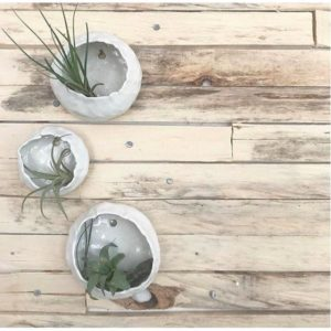 ceramic wall plant holder