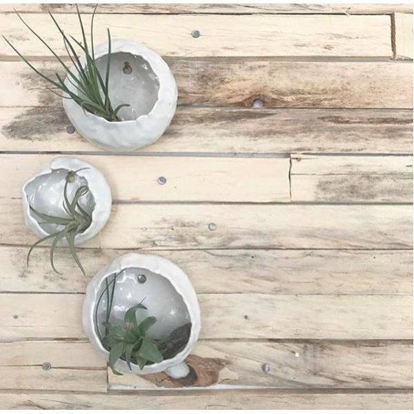 ceramic wall plant holder